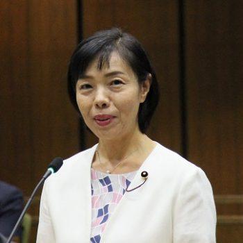 2019年第3回定例会 沢田あゆみ議員が一般質問を行いました